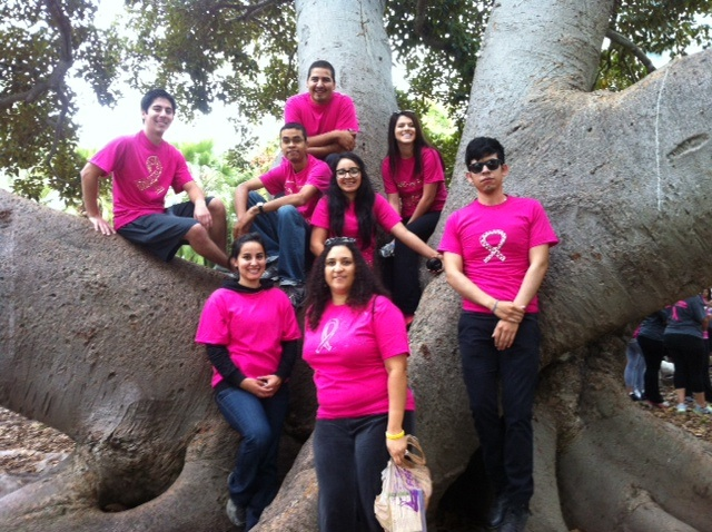 Breast Cancer Walk 2011
